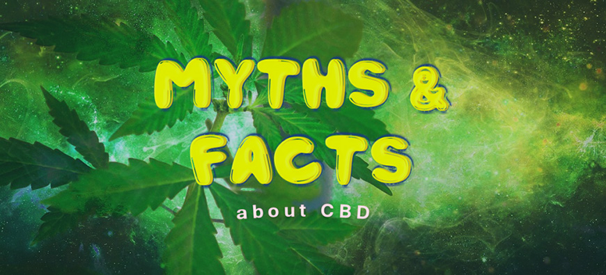 3 CBD Oil Myths to Remember Before You ...