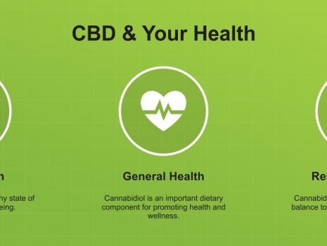 Wholesale CBD Oil Products For Distributors